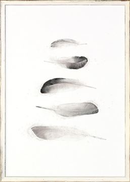 Picture of Five Feathers