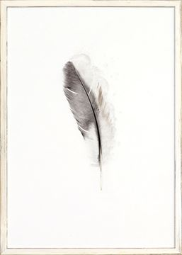 Picture of One Feather