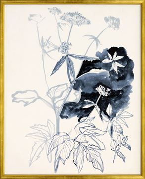Picture of Inked Floral Study I
