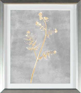 Picture of Honey Gold - New Frond (Large)