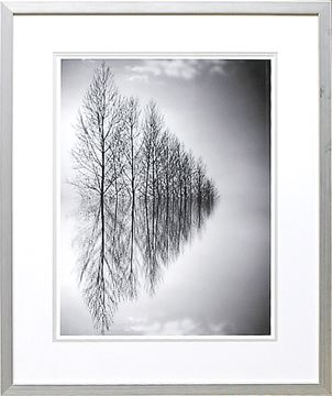 Picture of Reflected Horizon