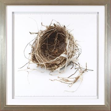 Picture of Simply Nests IV