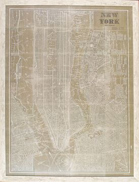 Picture of Blueprint Map New York Taupe