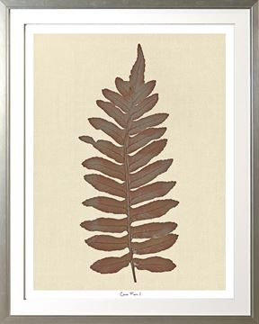 Picture of Cocoa Fern I Lge 30X38