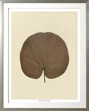 Picture of Cocoa Round Leaf I Lge 30X38