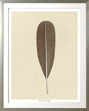 Picture of Cocoa Lumeria Leaf I Lge 30X38