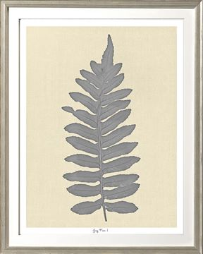 Picture of Grey Fern I Sml
