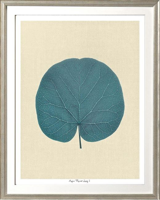 Picture of Aqua Round Leaf I Sml