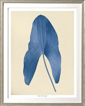 Picture of Indigo Araceae Leaf I Sml