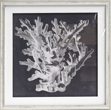 Picture of Azure Coral I