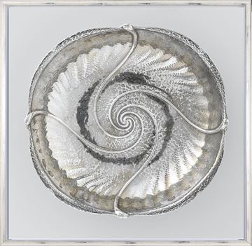 Picture of Nouveau Nautilus