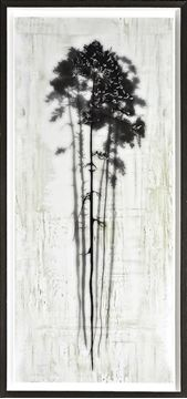 Picture of Coniferous Overlay II- Lrg 22X50
