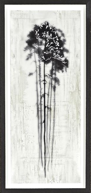 Picture of Coniferous Overlay II- Small