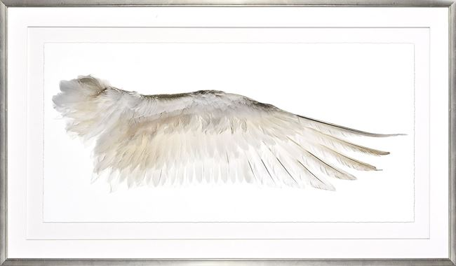 Picture of Wings Of A Feather II - Right