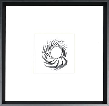 Picture of Seaweed Spiral