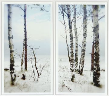 Picture of After The Storm Diptych