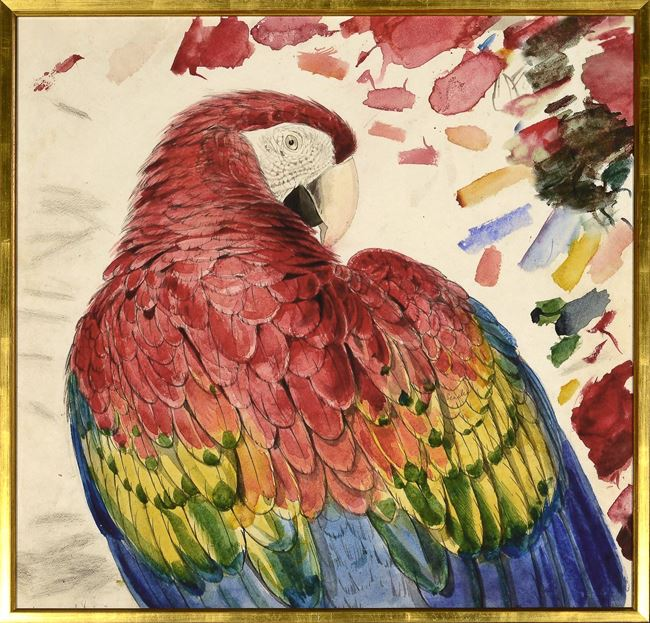 Picture of Lear - Red & Yellow Macaw - Lrg