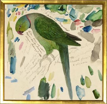 Picture of Lear - Green Parrot - Sml