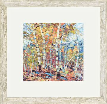Picture of Birch Colors I - Sml