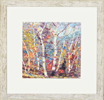 Picture of Birch Colors II - Sml