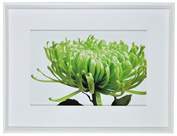 Picture of Green Bloom I