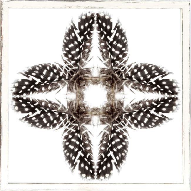 Picture of Feather Mandala I