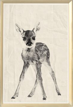 Picture of Vintage Babies - Fawn