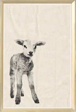 Picture of Vintage Babies - Lamb