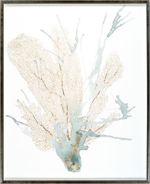 Picture of Spa Coral I - Large