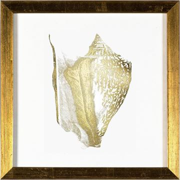 Picture of Gold - Shell III