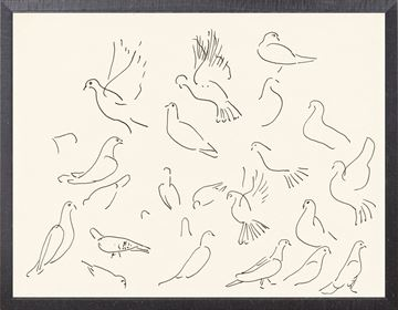 Picture of Collection 12 - Cachet, Doves  - 1900