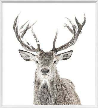 Picture of Mod. Farm - Stag - Mini - White