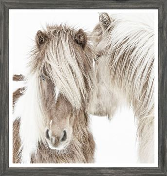 Picture of Mod. Farm - Icelandic Ponies - Mini - Grey
