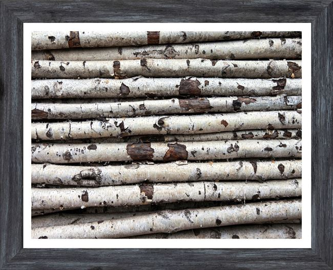 Picture of Mod. Farm - Birch Abstract II - Mini - Grey