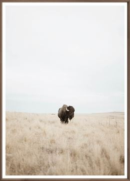 Picture of Great Plains Denizen - Large