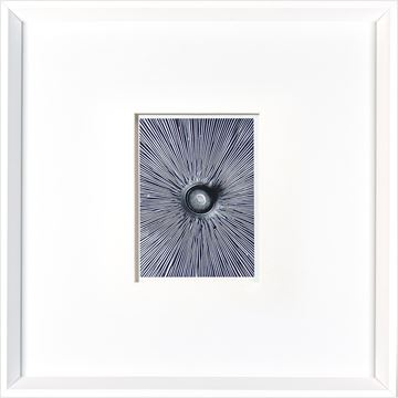 Picture of Mushroom Detail  - White