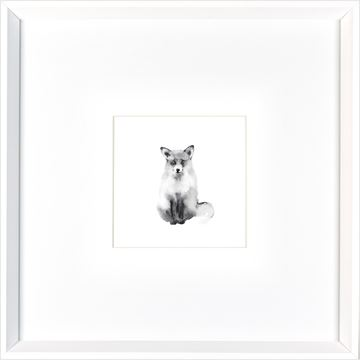 Picture of Foxy Stare  - White