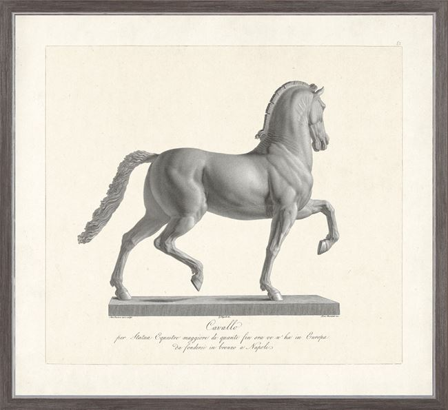 Picture of Cavallo Etching 1812 I