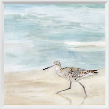 Picture of Speckled Willet II