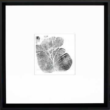 Picture of Palm Print
