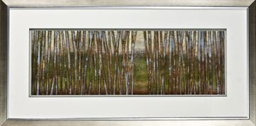 Picture of Blue Birch Forest II
