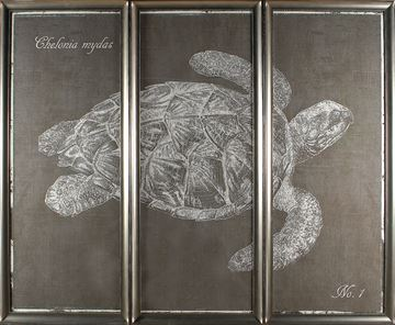 Picture of Sea Turtle Triptych S/3