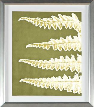 Picture of Chartreuse - Four Fronds