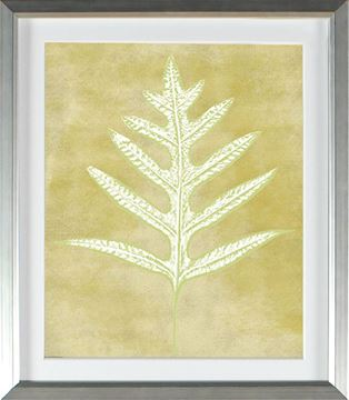 Picture of Chartreuse - Single Frond (Large)
