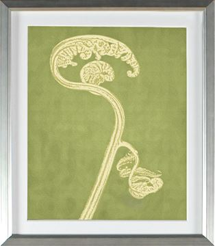 Picture of Chartreuse - Fiddlehead (Large)