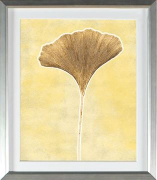 Picture of Honey Gold - Single Ginko (Large)