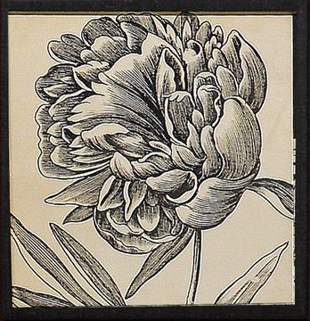 Picture of Graphic Floral II