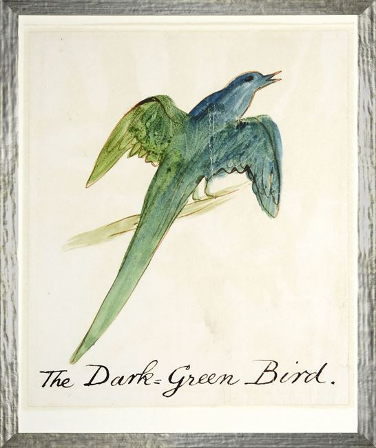 Picture of The Dark Green Bird - Small