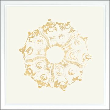 Picture of Sea Urchin Ivory - Gold