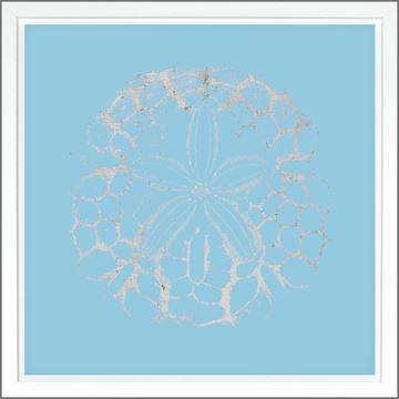 Picture of Sand Dollar Lt Blue - Silver